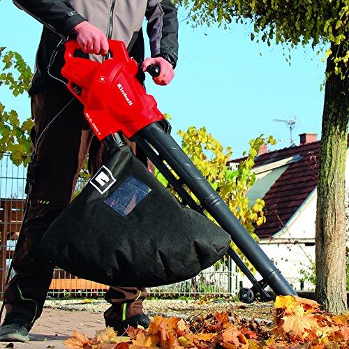 soplador de hojas
